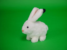 Robbie Rabbit